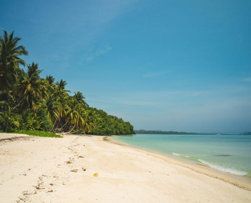 Andaman and Nicobar Islands Private Detectives