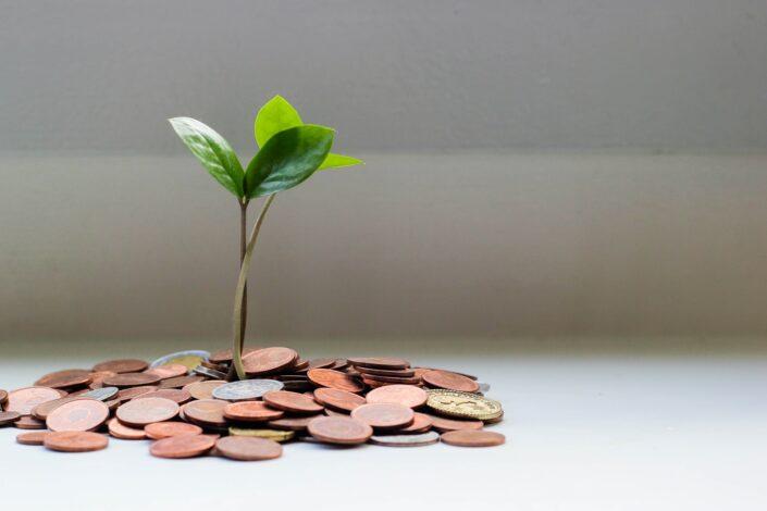 Financial Asset Tracking