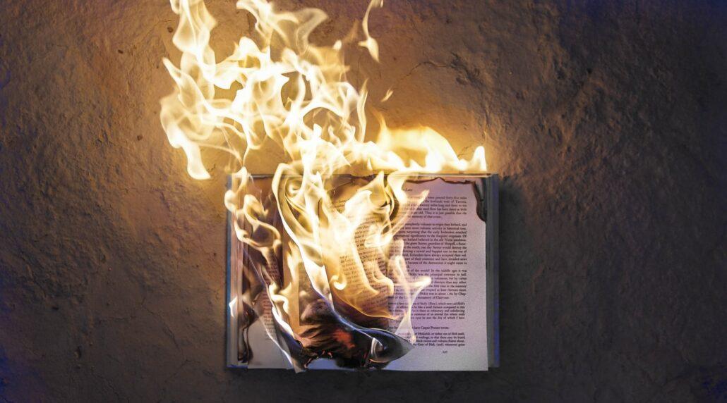 Arson or Fire Loss Investigation