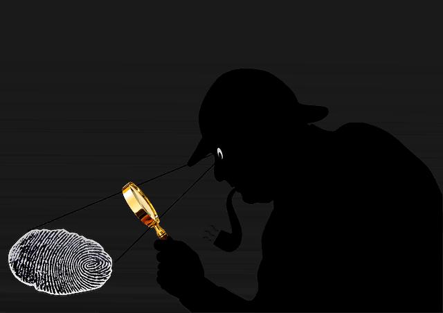 Sherlock Holmes Detective  - 422737 / Pixabay