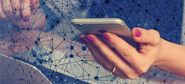 Smartphone Hand Web Woman Network  - geralt / Pixabay